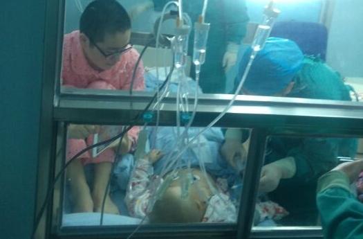 山东省脐血库伸援手 助力3岁白血病女童脐血移植