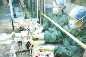 脐带血移植救治戈谢病患者