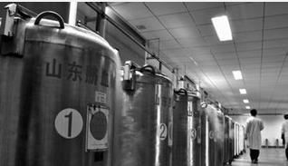 北京大学第一医院又一混合脐血移植成功
